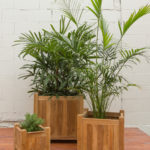 Sticks and Stones Outdoor - Plantation Teak Square Planter Boxes