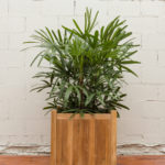 Sticks and Stones Outdoor - Plantation Teak Square Planter Box Large