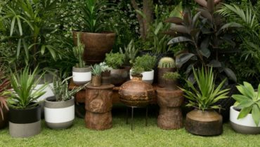 The Best Planting Tips for Sticks and Stones Concrete Pots